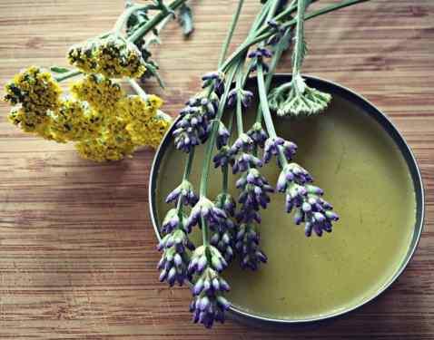 yarrow-lavender-salve-1024x804.jpg